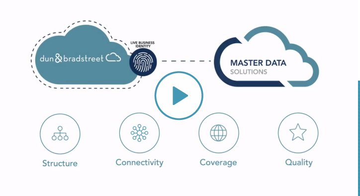 Master Data Management Services